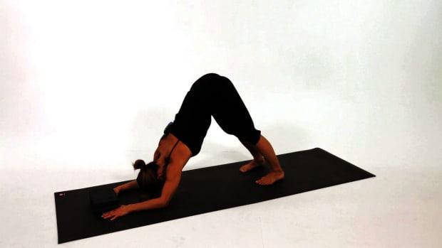 U. How to Do a Dolphin Dog Yoga Pose Promo Image