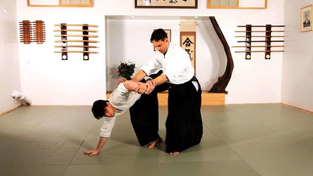 ZF. Principles of Aikido Promo Image