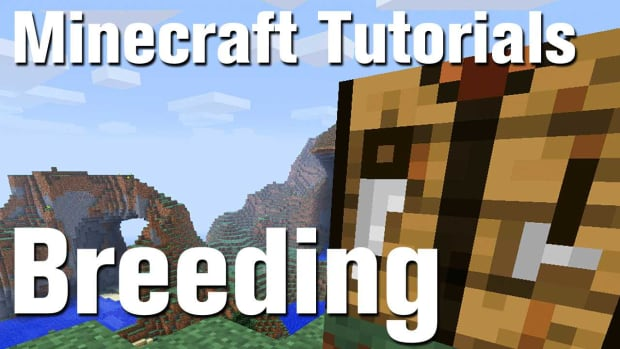 ZZM. Minecraft Tutorial: How to Breed Animals in Minecraft Promo Image