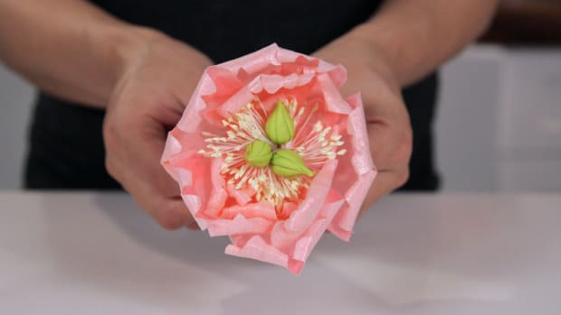 Lesson 14: Making a Wafer Paper Peony Promo Image