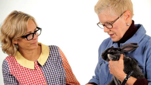 ZW. Pet Rabbit Care with Amy Sedaris & Mary E. Cotter Promo Image