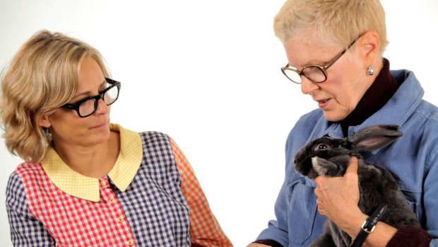 ZW. Pet Rabbit Care with Amy Sedaris & Mary E. Cotter Promo Image