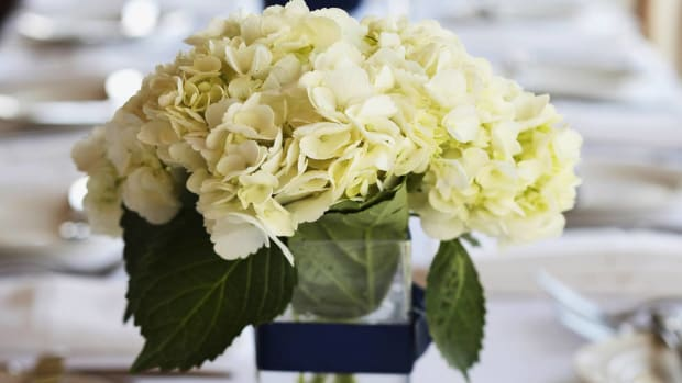 ZA. 8 Tips for Picking a Wedding Table Centerpiece Promo Image