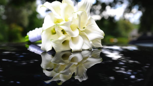 ZP. 5 Tips about White Flowers for a Wedding Promo Image