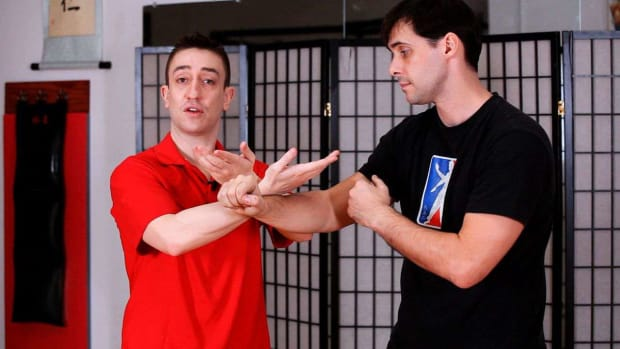 O. How to Do a Taan Sau aka Palm Up Hand in Wing Chun Promo Image