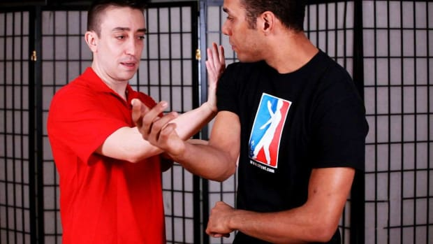 ZF. How to Do a Pou Paai Jeung aka Double Palm in Wing Chun Promo Image