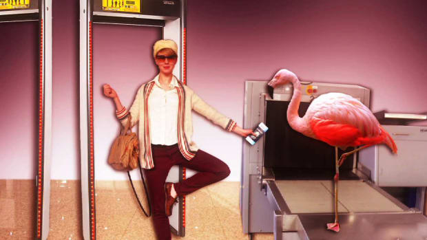Z. Health to Go: How to Exercise on an Airport Security Line Promo Image
