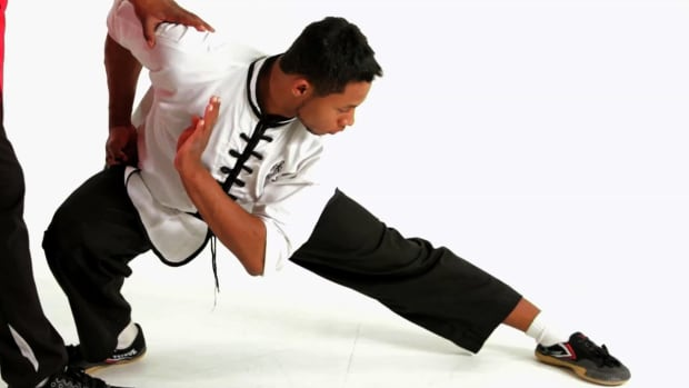 ZZB. How to Do the Leap Into Pu Bu in Shaolin Kung Fu Promo Image