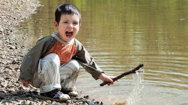 ZN. Regressive Autism Promo Image