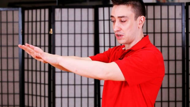 Y. How to Do a Jat Sau aka Shock Hand in Wing Chun Promo Image