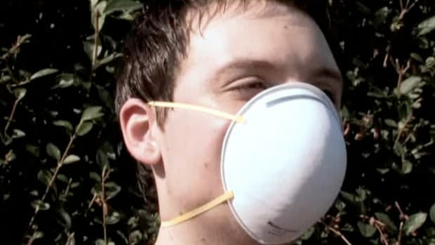 B. How to Cope with Hay Fever Promo Image