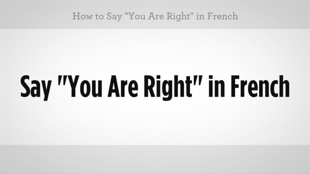 "ZZR. How to Say ""You Are Right"" in French Promo Image"