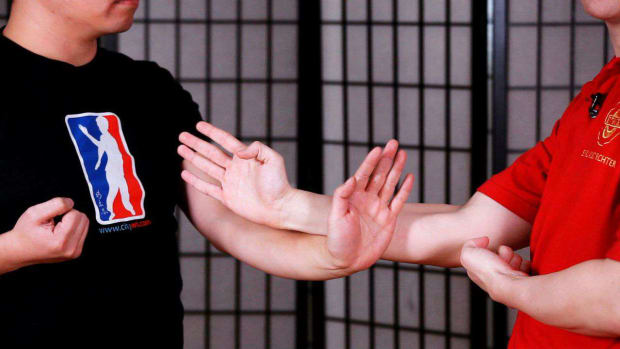 ZP. How to Do a Dan Chi Sau aka Single Hand Chi Sau in Wing Chun Promo Image