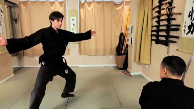 ZZZJ. Are There Any Special Skills Required to Learn Ninjutsu? Promo Image
