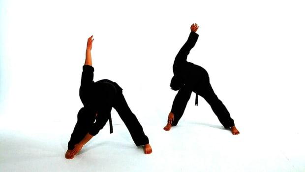 D. How to Do Basic Taekwondo Standing Stretches Promo Image