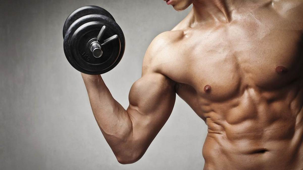How To Get Ripped Fast For Bodybuilding Howcast The Best How To